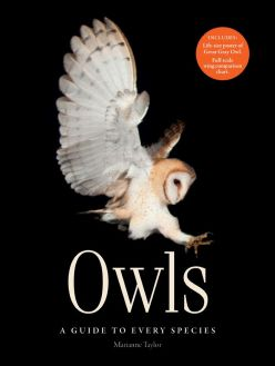 Owls cover